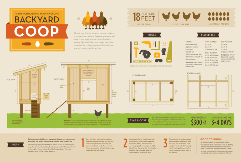 easy-build-chicken-coop-plans-with-simple-free-house-building-plan-perky-design.png